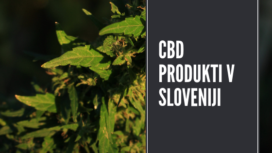 Nakup CBD produktov v Sloveniji